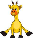 Cute baby giraffe Royalty Free Stock Image