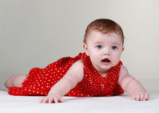 Cute baby girl Royalty Free Stock Photo