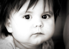 Cute Baby Girl. A portrait of a very cute baby girl with very big eyes, in black and white Royalty Free Stock Image