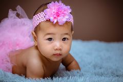 Cute baby girl from Asia pose royalty free stock image