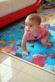 Cute baby girl crawling Royalty Free Stock Photos