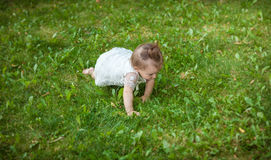 Cute baby girl crawling on grass at park. Beautiful cute baby girl crawling on grass at park royalty free stock images