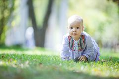 Cute baby girl crawling on lawn in park stock photography