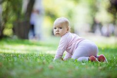 Cute baby girl crawling on lawn in park royalty free stock image