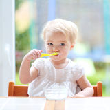 Cute baby girl eating yogurt from spoon royalty free stock photography