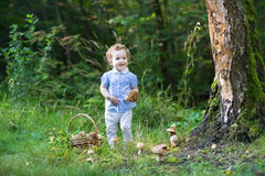 Cute baby girl gathering mushrooms in forest Stock Photo