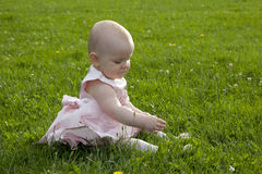 Cute baby girl in grass. Cute baby girl in pink dress plays in grass in summer royalty free stock image