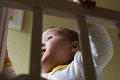 Cute baby girl in her cot Royalty Free Stock Image