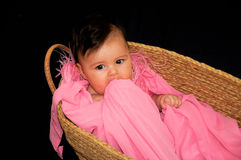 Cute baby girl in moses basket Stock Photos