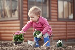 Cute baby girl in pink dress puts flowers Royalty Free Stock Photography