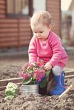 Cute baby girl in pink dress puts flowers Stock Photography