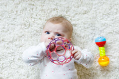 Cute baby girl playing with colorful rattle toy. Cute adorable newborn baby playing with colorful ball toy on white background. New born child, little girl Stock Photo