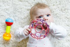 Cute baby girl playing with colorful rattle toy. Cute adorable newborn baby playing with colorful ball toy on white background. New born child, little girl Stock Photography