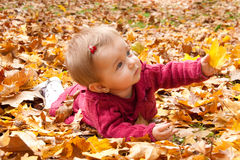 Cute baby girl playing with leaves Stock Image