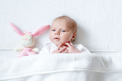 Cute baby girl playing with plush animal toy Royalty Free Stock Photography