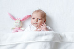 Cute baby girl playing with plush animal toy Stock Photography