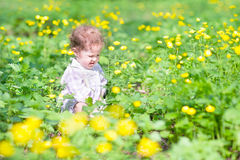 Cute baby girl playing with yellow flowers Royalty Free Stock Photo