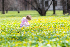 Cute baby girl playing with yellow flowers Stock Photo