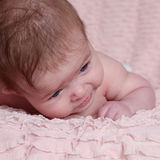 Cute baby girl. Portrait of cute baby girl lying on pink blanket Royalty Free Stock Photos