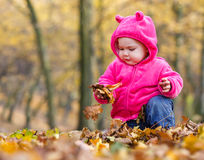 Cute baby girl sitting in autumn leaves Stock Image