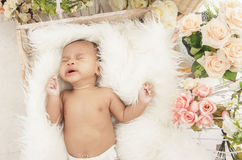 Cute baby girl sleeping comfy in box with fur blanket Royalty Free Stock Photography