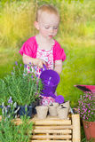Cute baby girl watering the plants Royalty Free Stock Photography