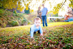 Cute Baby and Happy Parents. A cute baby boy crawls in the leaves with his parents watching Stock Image