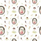 Cute baby hedgehog animal seamless pattern for kindergarten, nu Stock Image