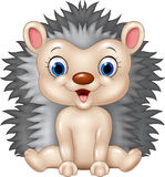 Cute baby hedgehog sitting  on transparent background Stock Photography
