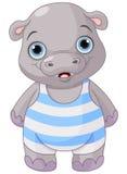 Cute Baby Hippo Stock Photo