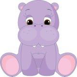 Cute baby hippopotamus Stock Photography