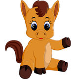 Cute baby horse sitting. Illustration Cute baby horse sitting Royalty Free Stock Image