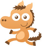 Cute baby horse smiling and running Stock Images