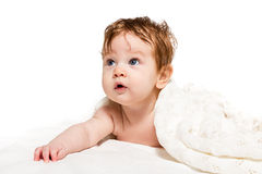 Cute baby on its belly covered blanket stock photography