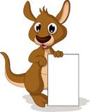Cute baby kangaroo cartoon posing with blank sign Royalty Free Stock Photos