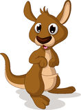 Cute baby kangaroo smiling Royalty Free Stock Image