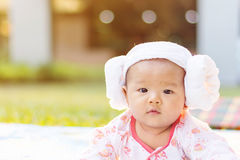 Cute  baby lie prone on ground at park. Cute Asian baby lie prone on ground at park Stock Photography