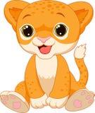Cute baby lion cartoon. Illustration of Cute baby lion cartoon Stock Image