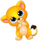 Cute baby lion cartoon Royalty Free Stock Images