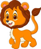 Cute baby lion walking  on white background Royalty Free Stock Photos
