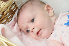 Cute baby lying in the basket Stock Photos