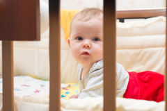 Cute baby lying on his stomach in his bed. Stock Photography