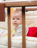 Cute baby lying on his stomach in his bed. Royalty Free Stock Images