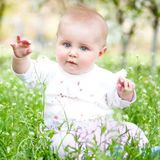 Cute baby on the meadow Royalty Free Stock Image