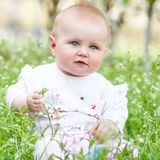 Cute baby on the meadow Stock Photos