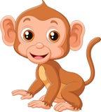 Cute baby monkey Royalty Free Stock Photo