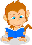 Cute baby monkey reading Stock Photo