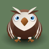 Cute baby owl Royalty Free Stock Images