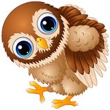Cute baby owl cartoon walking. Illustration of Cute baby owl cartoon walking Stock Photos