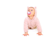 Cute baby with pacifier crawls and looks up on white Stock Images